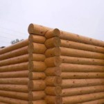 Словарь плотников